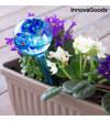 Automatic irrigation globes Aqua · loon InnovaGoods (2 Pieces)